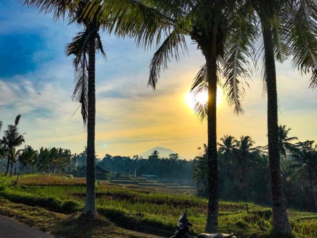 writing-retreat-bali-